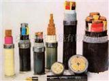 电线电缆  电缆  电力电缆  铠装电缆