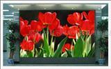 北京最大的LED显示屏生产厂家低价现货批发LED屏