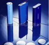 航模电池,锂聚合物电池组航模电池LP8544125-2P
