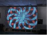 1024点W31.25全彩色LED彩幕屏