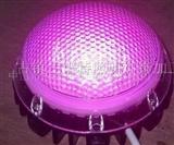 蜂窝LED像素灯