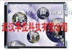 东芝工业液晶屏:LTM06C310,LTM10C209H