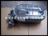 DGC35/127N(B)矿用支架灯,35W支架灯