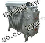 RB1-2000/127煤矿用隔爆型电热取暖器