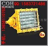 BFC8186_LED隔爆型泛光灯、LED防爆吸顶灯