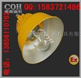 厂家直销、BLC8600、防爆道路灯、高亮度防爆道路灯