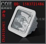 防眩棚顶灯 NFC9100 附图 维库电子