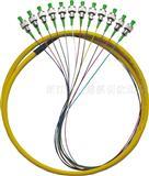 12芯束状尾纤,12芯带状尾纤,防水尾缆,光纤跳线