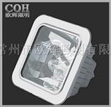 NFC9100,防眩照明应急灯,应急照明灯,防眩通路灯