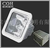 NFE9100防眩应急棚顶灯,防眩泛光灯,防眩应急通路灯