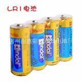 LR1电池 8号电池厂家 LR1碱性干电池