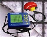 钢筋探测仪/钢筋扫描仪/钢筋保护层测试仪
