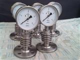 YTP-100隔膜不锈钢压力表