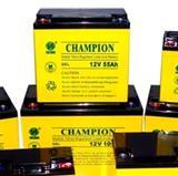 冠军蓄电池,高性价比广东冠军蓄电池