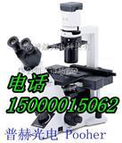 奥林巴斯倒置显微镜(授权代理)