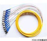 12芯FC束状尾纤----12芯SC束状尾纤厂家批发