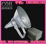 NTC9200 防震投光灯,大功率防爆投光灯